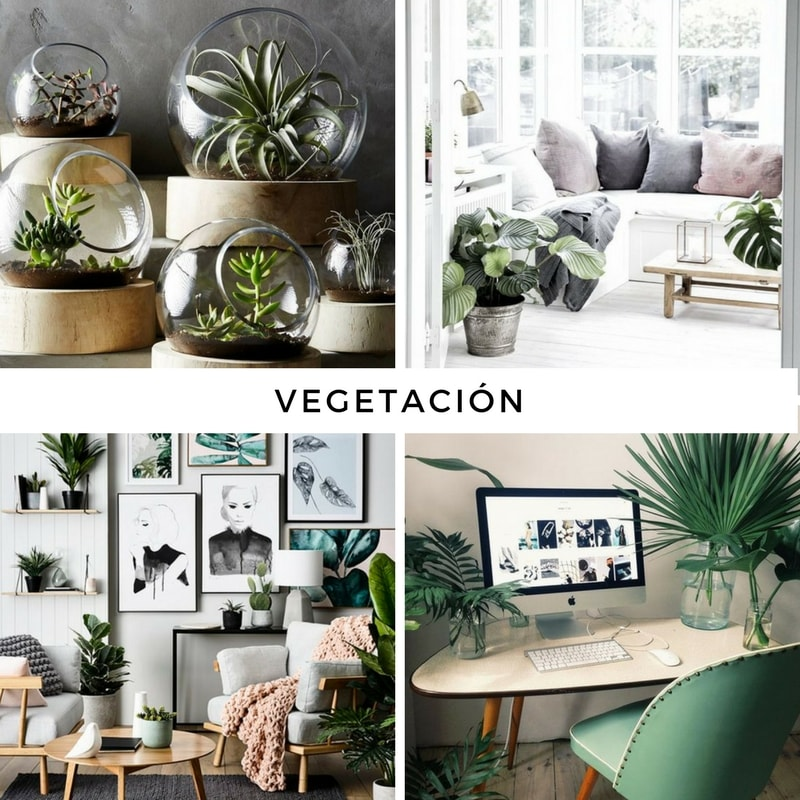 tendencias_en_decoración_2017_decoinspiración_interiores_vegetación