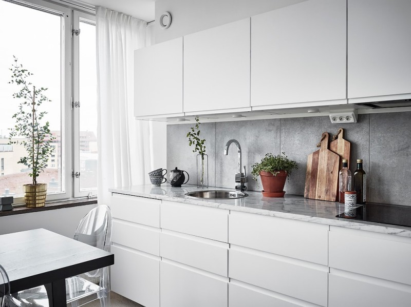 Decorar_con_plantas_de_interior_un_mini_piso_decoinspirción_decolook_detalles_diseño_cocina
