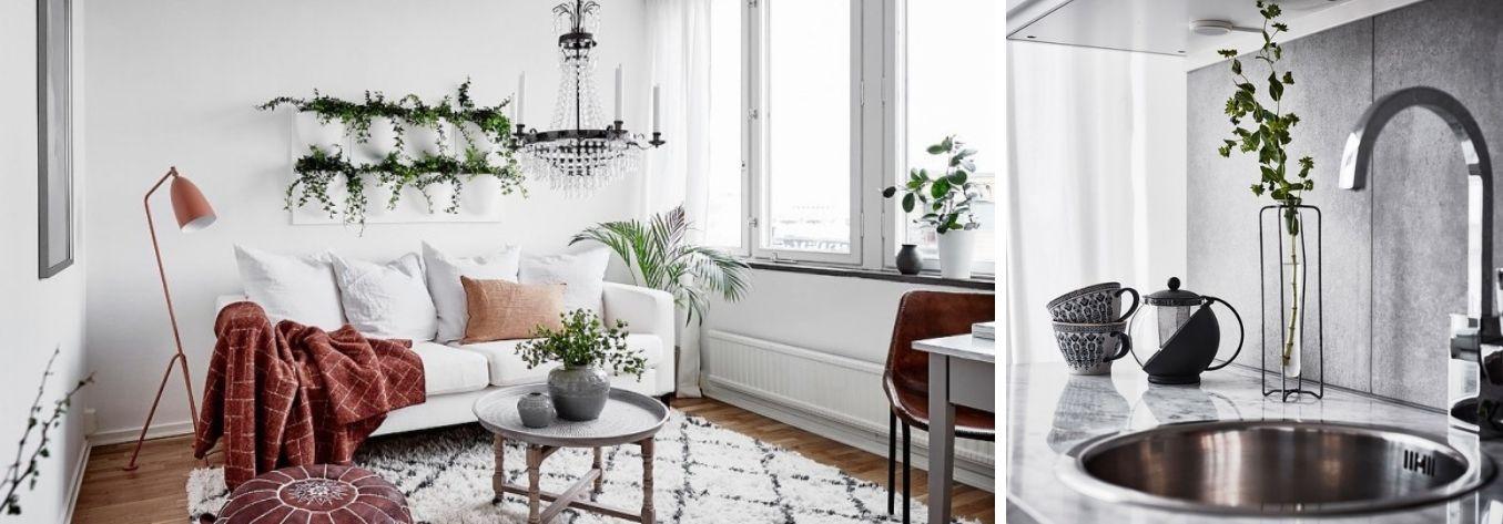 Decorar con plantas de interior un mini piso